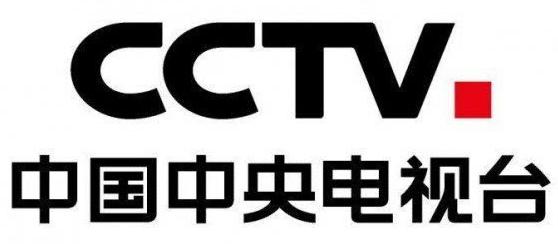 中央电视台标志矢量